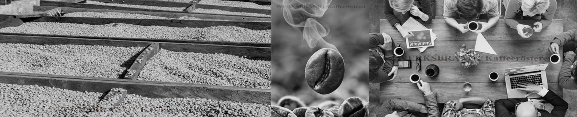 WERKSBRANDT Kaffeerösterei Impressionen Rohkaffee Kaffeebohne Besprechung mit Kaffee