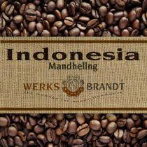 Indonesia Mandheling Mena Gold |  | feine Säure - dezent stoffig - gute Fülle