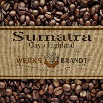 Sumatra Mandheling |  | feine Säure - dezent stoffig - gute Fülle