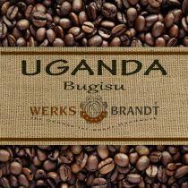 Uganda Bugisu |  | sehr gute Fülle - harmonisch - feinfruchtig