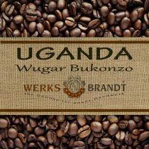 Uganda Wugar Bukonzo Bio |  | sehr erlesen - fleischig - floral