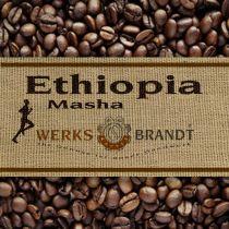 Etiopia Masha Bio |  | Schokolade, Wild, Beeren, Honig - blumig komplex