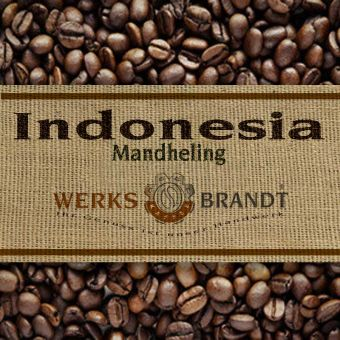 Indonesia Mandheling Mena Gold 6x250g