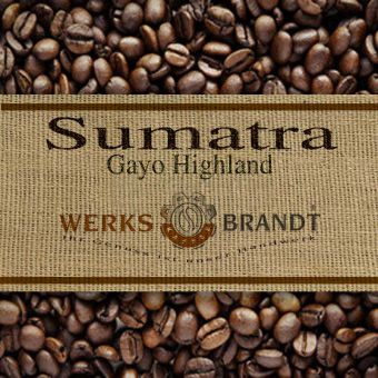 Sumatra Gayo Bio 6x500g