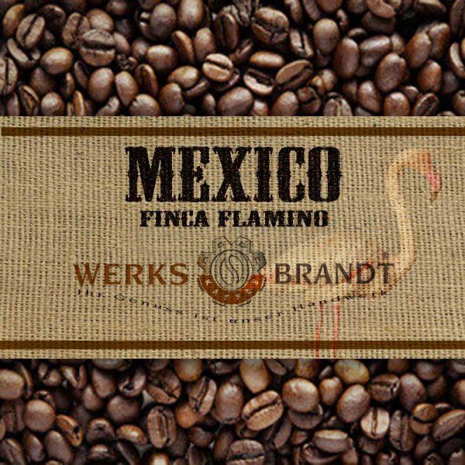 Mexico Finca Flamingo Bio 6x1kg