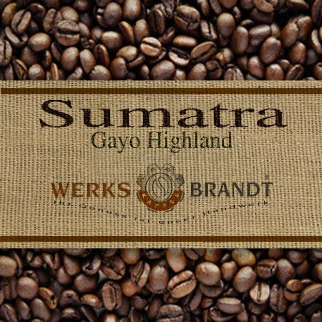 Sumatra Gayo Bio 500g